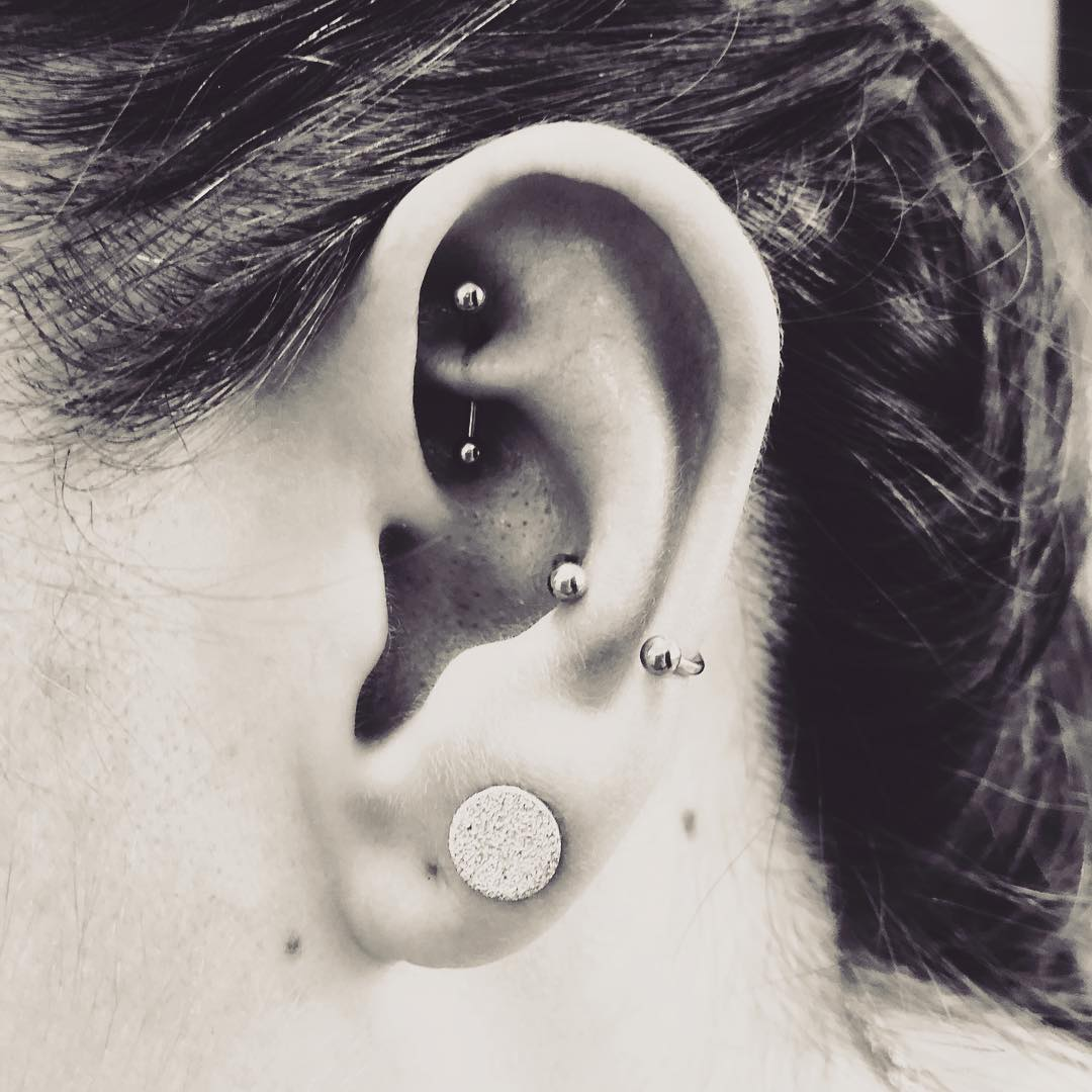 Rook / Conch